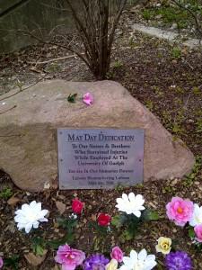 May Day (1) 2015